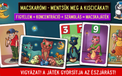 Catz kártyajáték